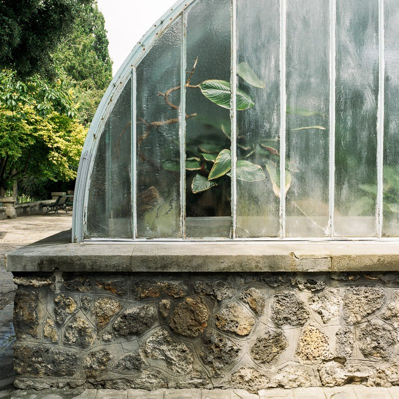 Greenhouse detail, Paris